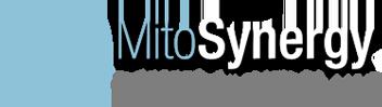 Mito Synergy