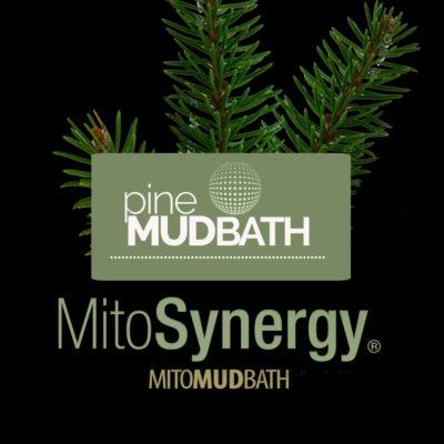 MitoDetoxMud-PineProduct-Image